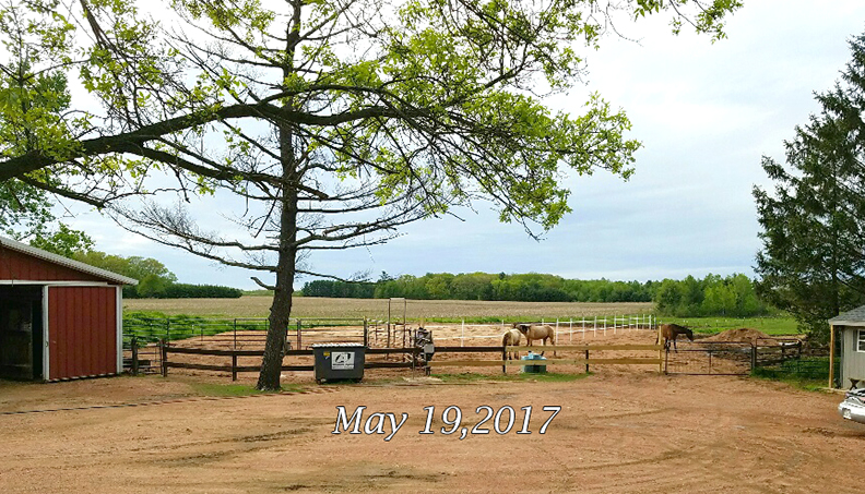 Name: arena-pasture-view-from-house-may19-20170519_195616_resized.jpg, Views: 673, Size: 421.02 KB