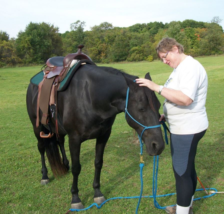 Name: Onyx and Lori saddled in pasture A - 9-17-2017.JPG, Views: 468, Size: 138.94 KB