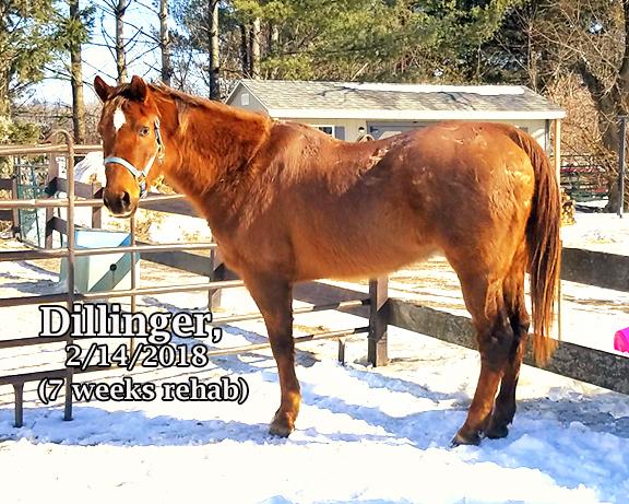 Name: dillinger feb14.jpg, Views: 630, Size: 356.64 KB