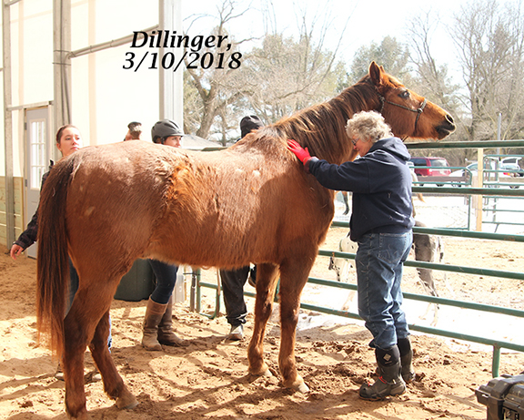 Name: dillinger2-march10-IMG_1991-copy.jpg, Views: 579, Size: 334.42 KB