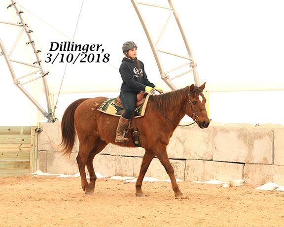 Name: dillinger3-march10-IMG_1995-copy.jpg, Views: 589, Size: 243.59 KB