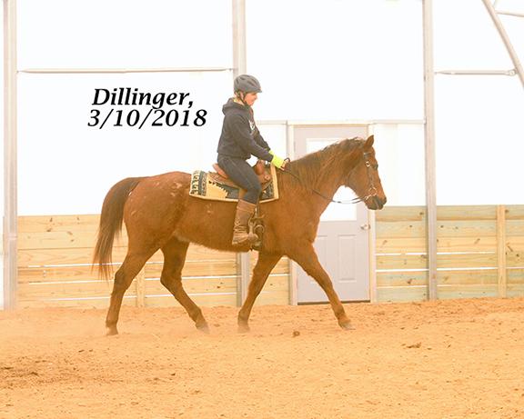 Name: dillinger4-march10-IMG_2029-copy.jpg, Views: 575, Size: 225.65 KB