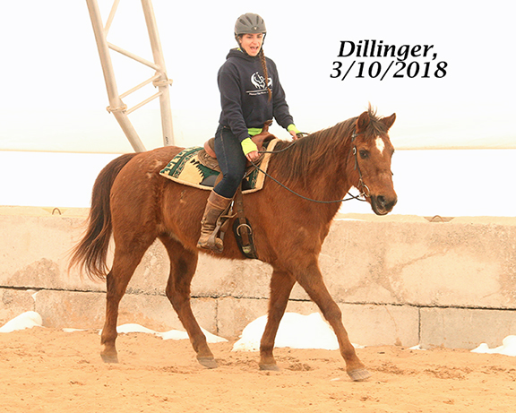 Name: dillinger5-march10-IMG_2035-copy.jpg, Views: 581, Size: 233.96 KB