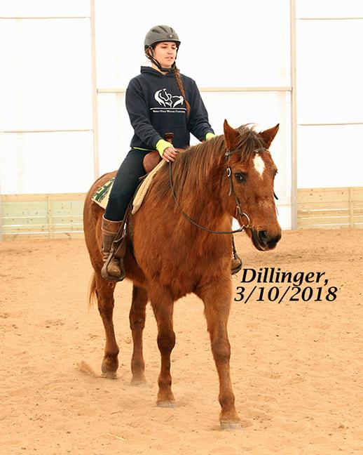 Name: dillinger6-march10-IMG_2006-copy.jpg, Views: 580, Size: 222.74 KB