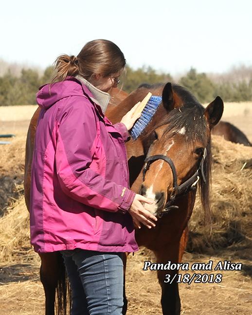 Name: alisa-volunteer-pandora-march-17-IMG_2345-copy.jpg, Views: 714, Size: 279.00 KB