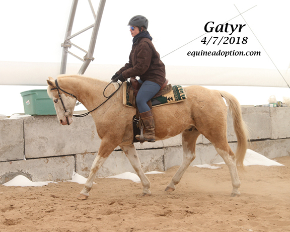 Name: gatyr3-ride-april7-IMG_2855-copy.jpg, Views: 291, Size: 194.02 KB