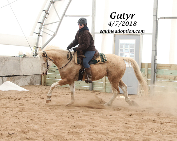 Name: gatyr4-ride-april7-IMG_2861-copy.jpg, Views: 284, Size: 191.84 KB