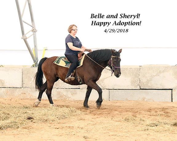 Name: belle-sheryl-adoption-day-april29-IMG_3217-copy.jpg, Views: 318, Size: 229.51 KB