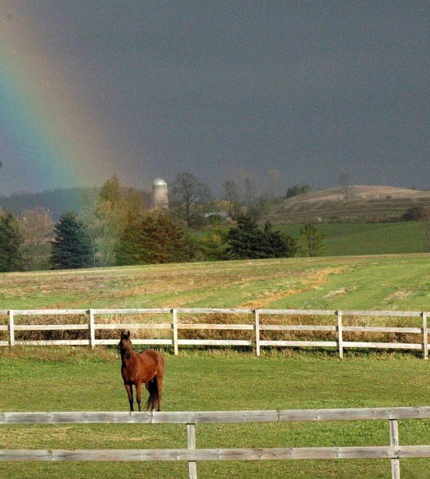 Name: denero4 rainbow.jpg, Views: 23, Size: 265.04 KB