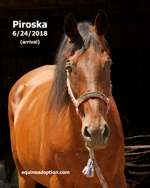 Name: piroska3-june24-IMG_4492-copy.jpg, Views: 165, Size: 258.20 KB