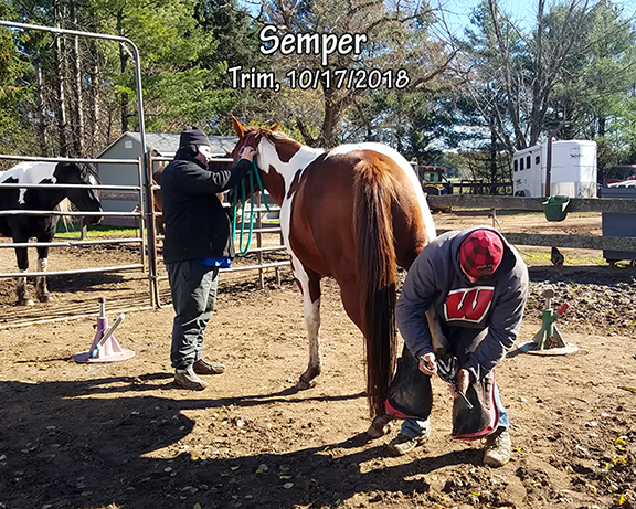 Name: SEMPER-TRIM-OCT17.jpg, Views: 290, Size: 352.33 KB