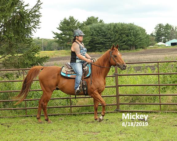Name: mickey-ride1-aug18-IMGL6898-copy.jpg, Views: 579, Size: 306.81 KB