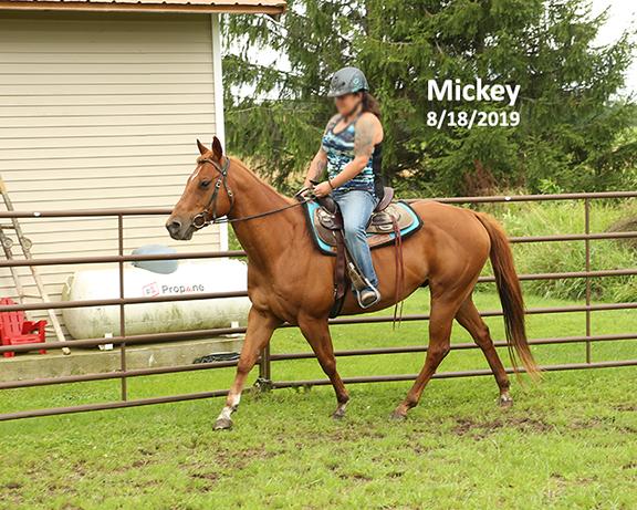 Name: mickey-ride2-aug18-IMGL6910-copy.jpg, Views: 593, Size: 301.41 KB