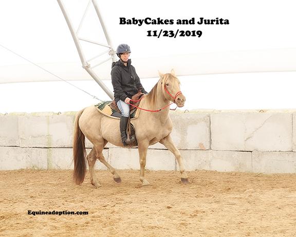 Name: babycakes-jurita-nov23-IMGL9982-copy.jpg, Views: 267, Size: 151.31 KB