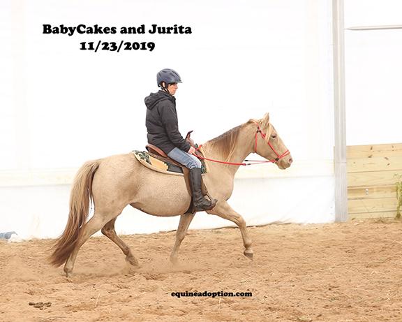 Name: babycakes-jurita-nov23-IMGL9987-copy.jpg, Views: 270, Size: 143.66 KB