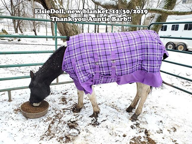 Name: elsied-blanket1-nov30-copy.jpg, Views: 559, Size: 147.82 KB