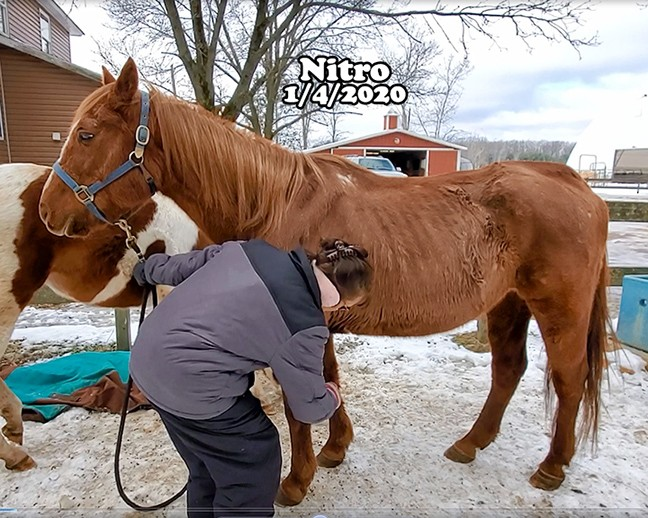 Name: nitro-jan4-copy.jpg, Views: 779, Size: 124.35 KB
