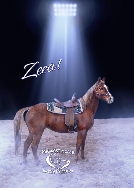 Name: zeea-star-jpg.jpg, Views: 673, Size: 54.35 KB