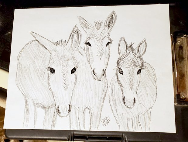 Name: kathy billek donks girls draw karen.jpg, Views: 47, Size: 71.61 KB