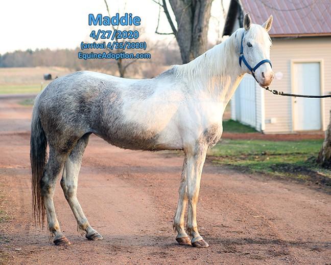 Name: maddie1-april27-IMGL1195-copy.jpg, Views: 791, Size: 111.38 KB