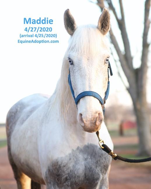 Name: maddie3-april27-IMGL1223-copy.jpg, Views: 801, Size: 58.25 KB
