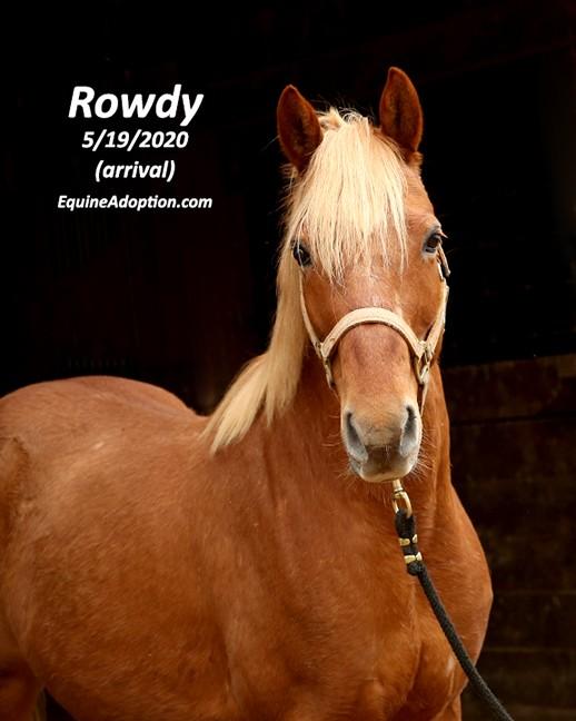 Name: rowdy3-may19-IMGL1842-copy.jpg, Views: 377, Size: 63.96 KB