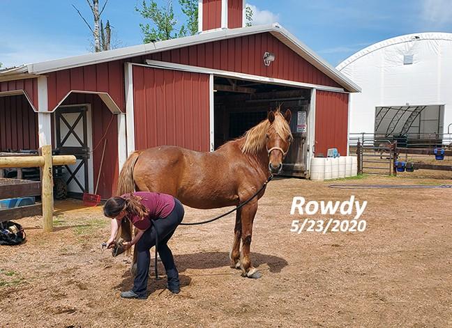 Name: rowdy-feet-pic-may23-20200523_120303-copy.jpg, Views: 216, Size: 123.19 KB