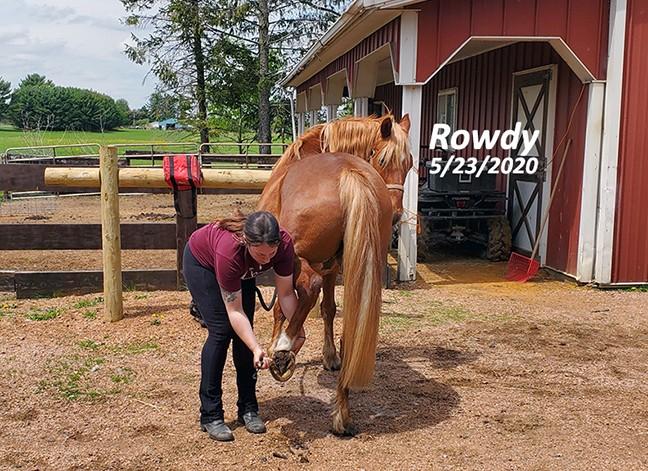 Name: rowdy-foot-pick-may23-20200523_120050-copy.jpg, Views: 225, Size: 144.98 KB