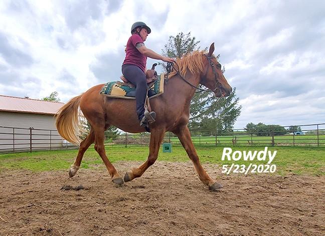 Name: rowdy-trot-cool-may23-20200523_122952-copy.jpg, Views: 226, Size: 110.05 KB