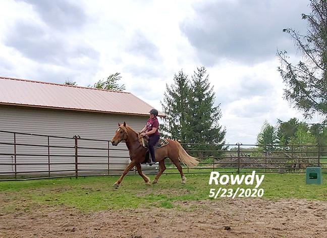 Name: rowdy-trot-may23-20200523_123000-copy.jpg, Views: 226, Size: 104.08 KB
