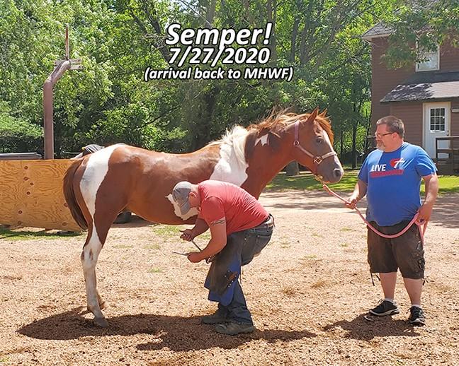 Name: semper-july27-20200727_125523-copy.jpg, Views: 41, Size: 176.41 KB