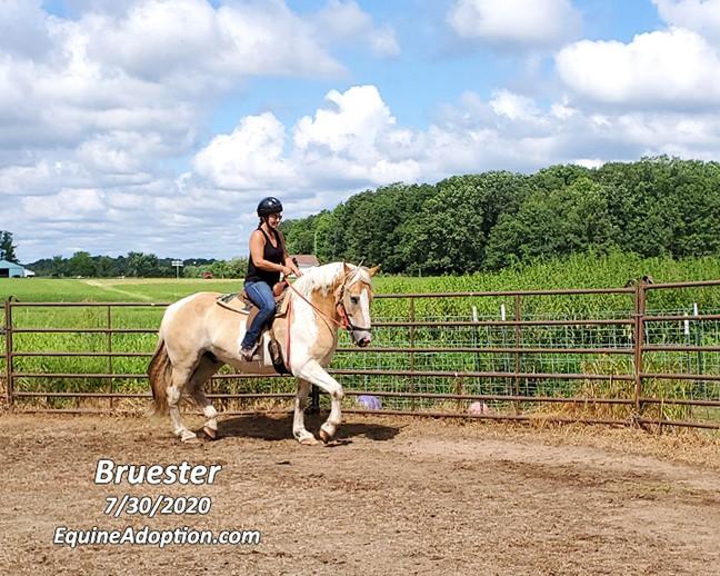 Name: bruester-alyssa-july30-20200730_103300-copy.jpg, Views: 67, Size: 138.23 KB