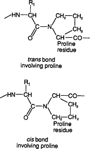 Proline_in_Polypeptides.png