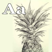 a-anana.jpg