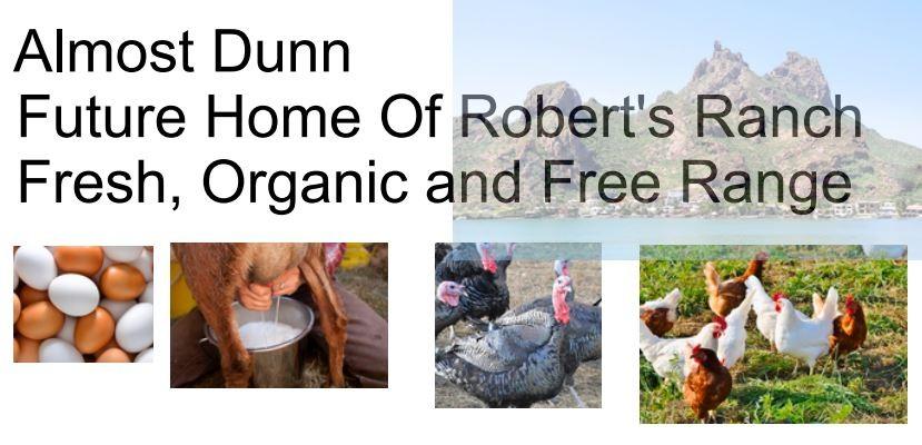 Almost Dunn Robert's Ranch.jpg
