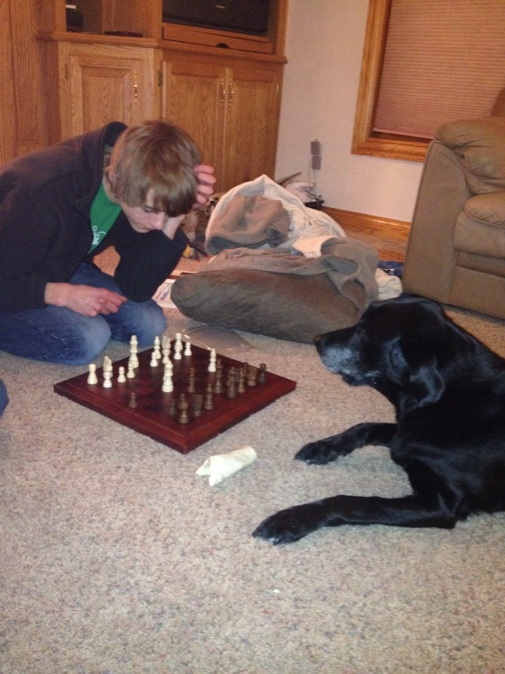 Shadow playing chess.jpg