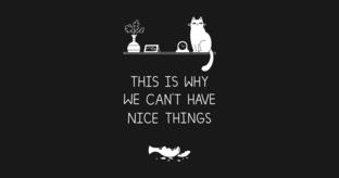 nice_things.jpg