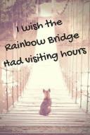 Art-RainbowBridge-SMALL.jpg