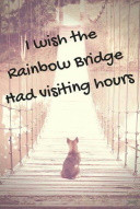 z-Loss-RainbowBridge-SMALL.jpg