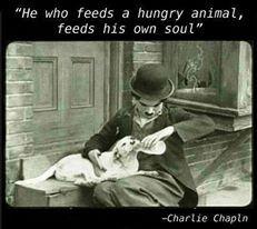 hungry animal.jpg