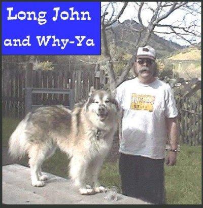 long20-Why-ya.jpg