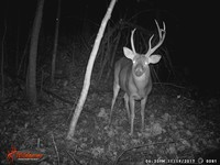 Click image for larger version - Name: wow new Bucks. nov 19 20th 080.JPG, Views: 4, Size: 330.60 KB