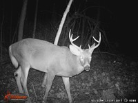 Click image for larger version - Name: wow new Bucks. nov 19 20th 087.JPG, Views: 5, Size: 318.12 KB