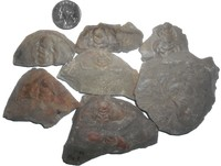 Click image for larger version - Name: Marble Mountain Trilobites.jpg, Views: 20, Size: 200.11 KB