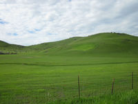 Click image for larger version - Name: Sutter Butte U2 (2).JPG, Views: 15, Size: 155.09 KB
