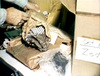 Click image for larger version - Name: Gloves.jpg, Views: 54, Size: 59.01 KB