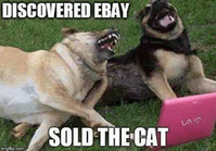discovered-ebay-varo-sold-the-cat-imgfip-com-dog-meme-53182850~2.png